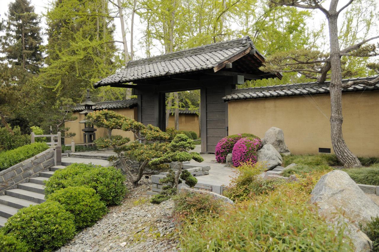 Japanese garden 8 compound by andyserrano on deviantart for Compound garden designs