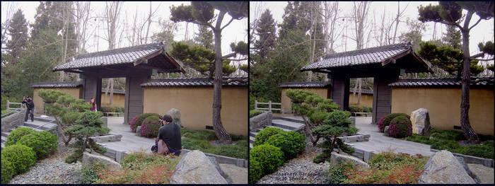 Japanese Garden - Before After