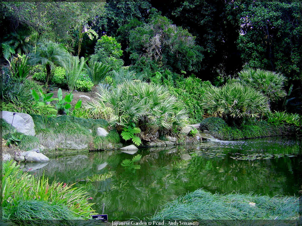 Japanese garden 12 pond by andyserrano on deviantart for Japanese pond garden