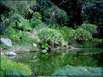 Japanese Garden 12 Pond