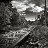 the train is coming by jurcic