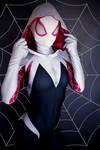 Spider Gwen Masked 2 by AprilRii