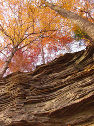 Indiana Rocks by lilfixit