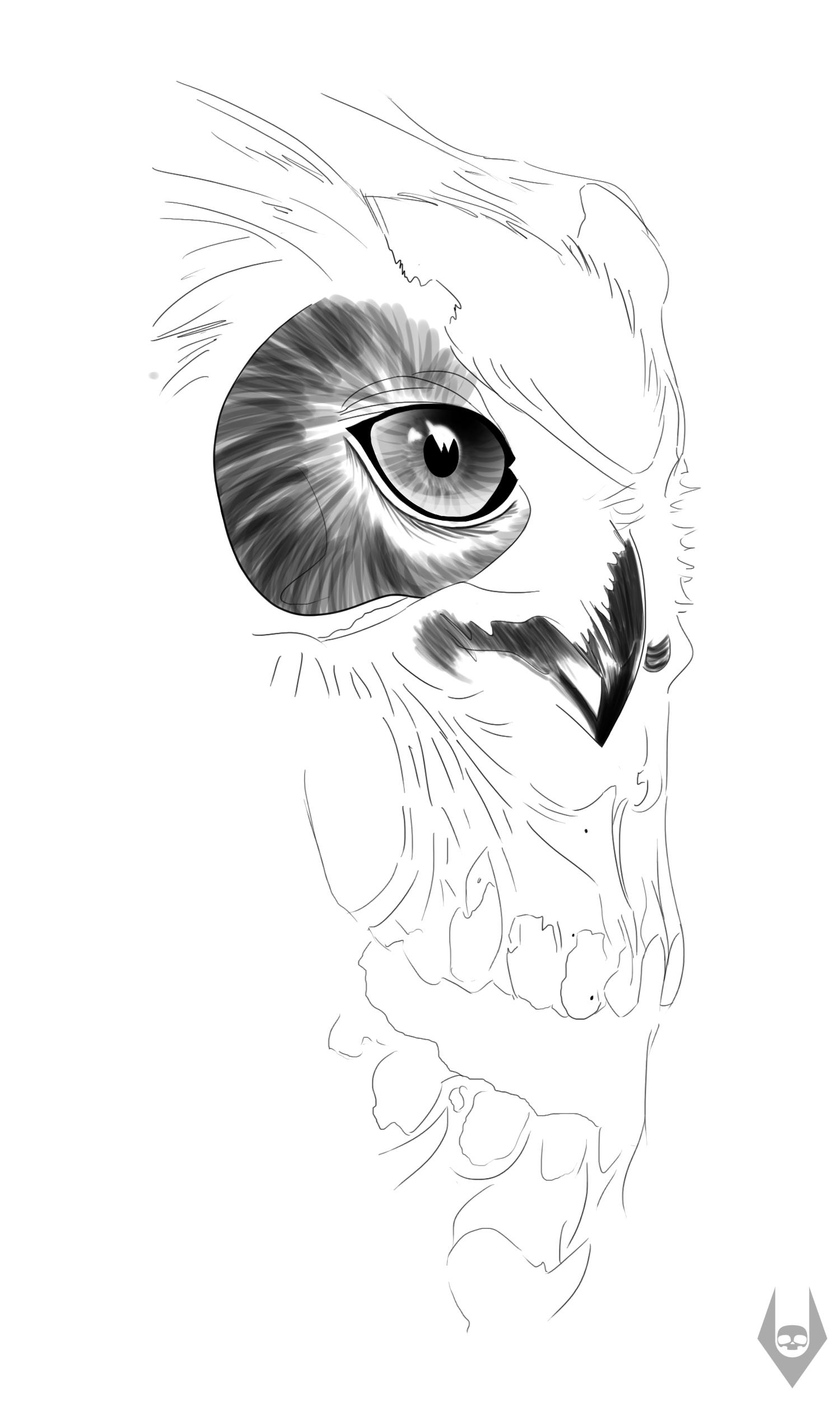 Owl Skull by Arte-Animada on DeviantArt - photo#34