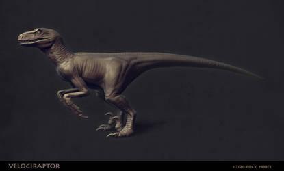 Velociraptor by serg