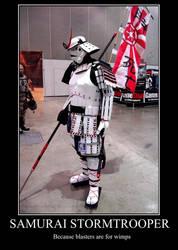 Stormtrooper De-motivational