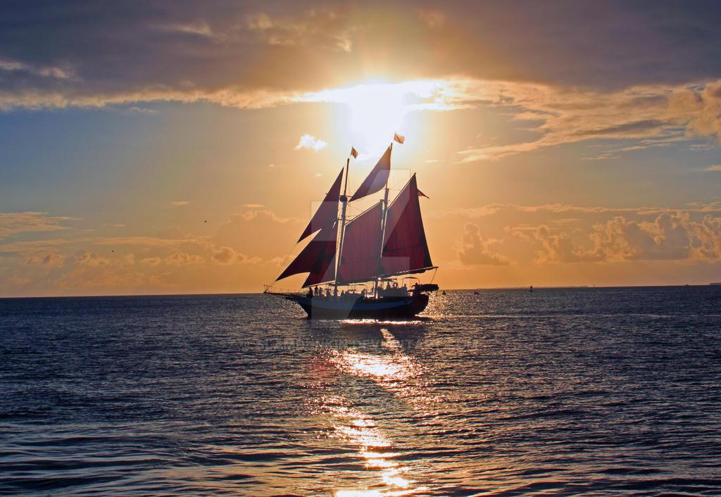Jolly at Sunset by SlamDunkin