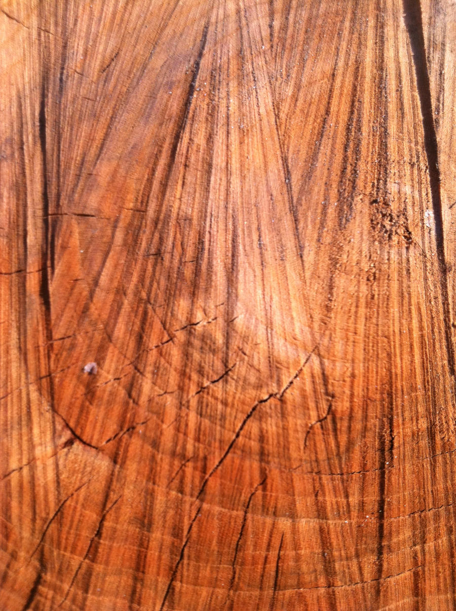 Wood Background by hm923