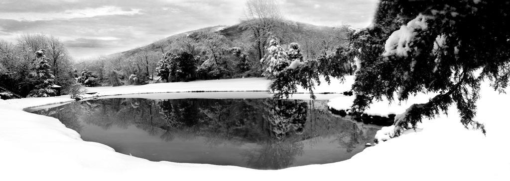 Winter Pond by hm923