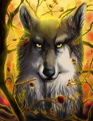 The Untamed Autumn [video] by Wolven-Sister