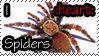 I :heart: Spiders by RottenKindaCute
