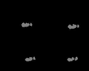 Dog Bases - F2U [2021]