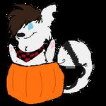 :GA: SamCat Pumpkin by FIynn
