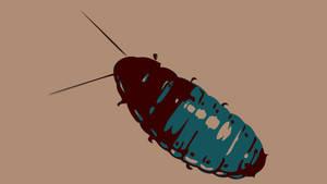 Roach by Cuccoteaser