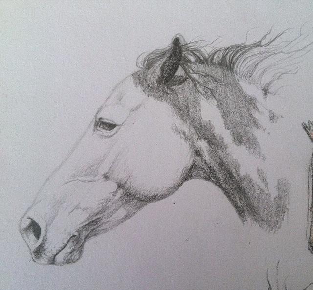 paint horse by PaleMount
