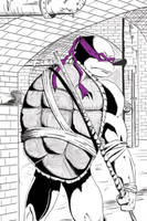 Donatello Sample Final by Jareth210