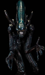 Alien Closeup by sivousplay