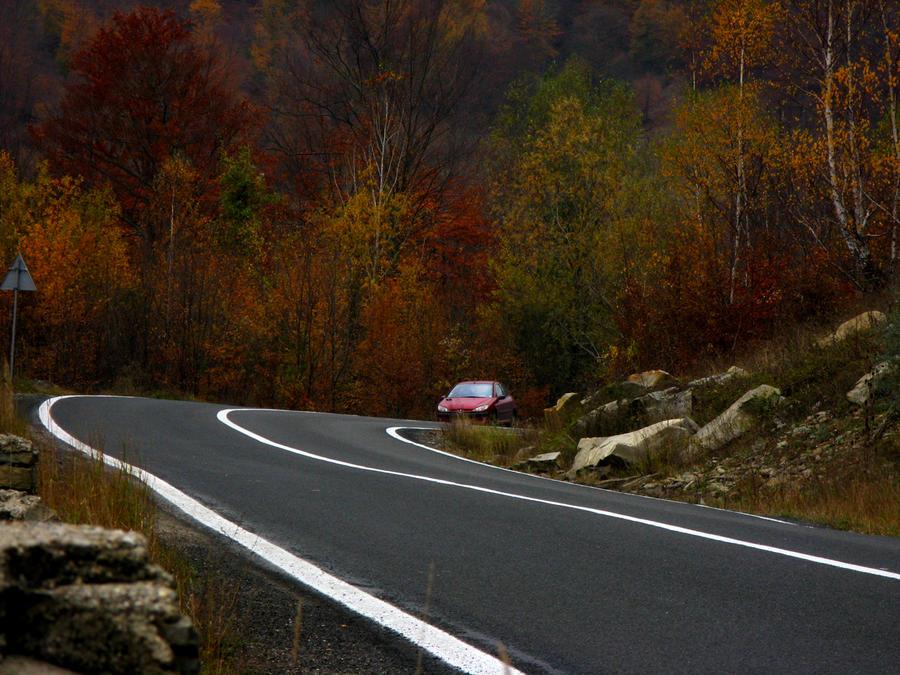 Autumn on Siriu by dpaulo