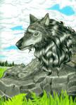 NW werewolf