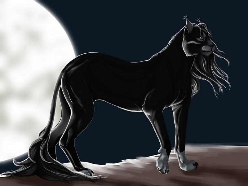 moon light shadow by Arly-Barly-Wartek