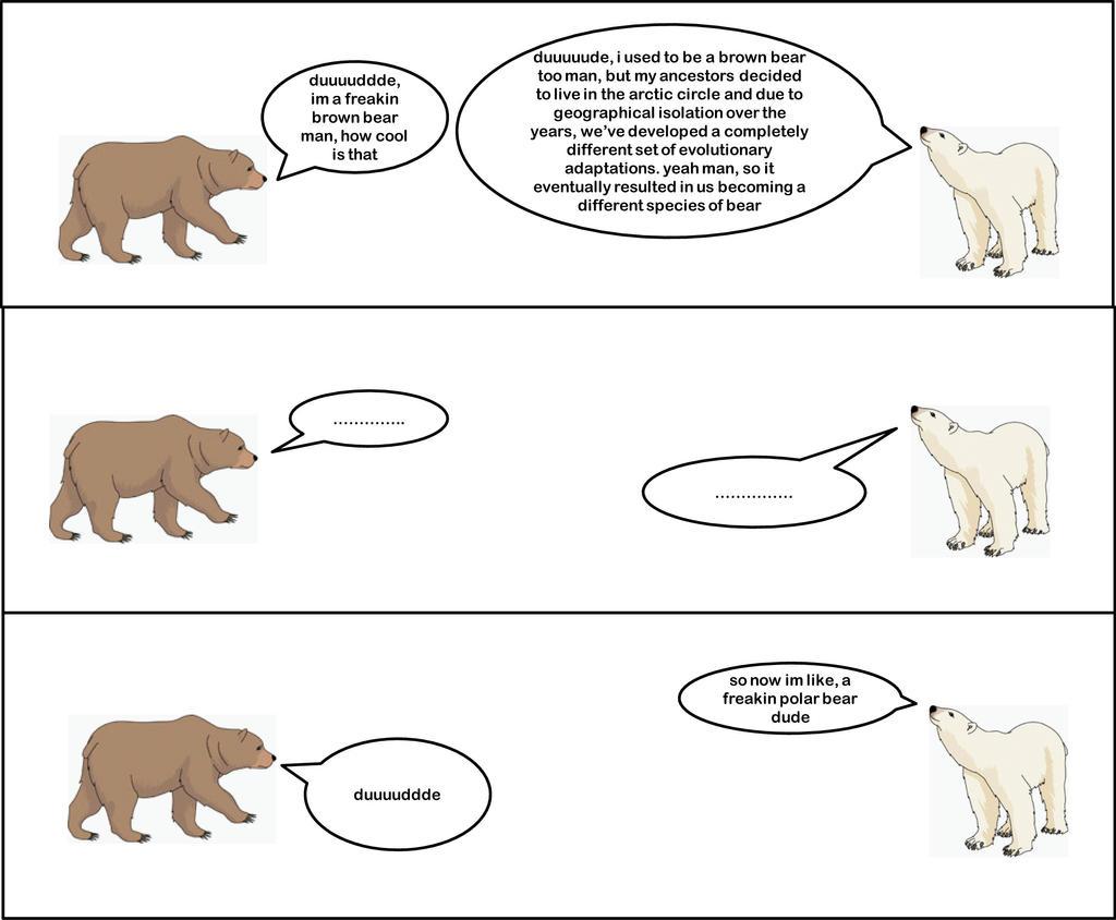 Divergent Evolution by sciencemeetsart