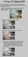 5 Ways To Make Black and White by Zanarky