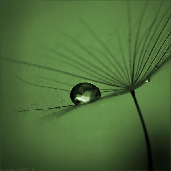 Balance by anna-earwen