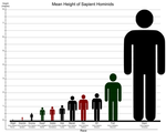 The Species and Races of Humankind