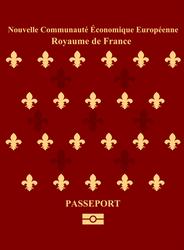 French Passport by Nederbird