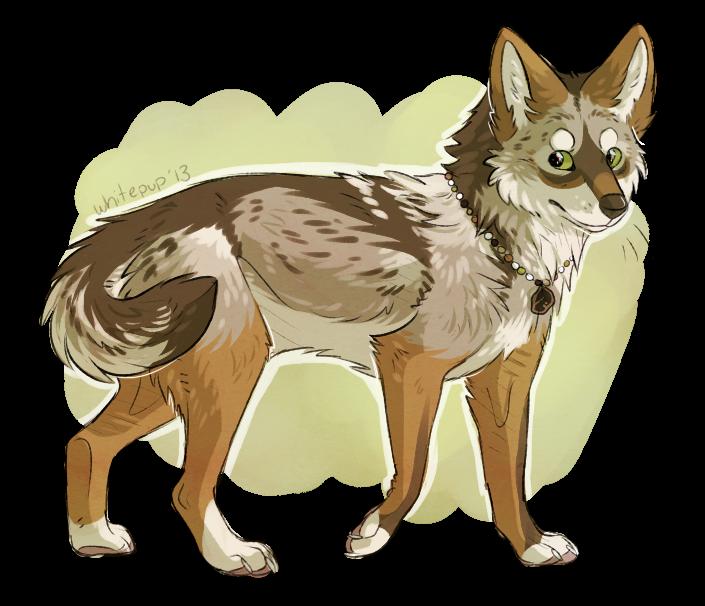 brush wolf by whitepup
