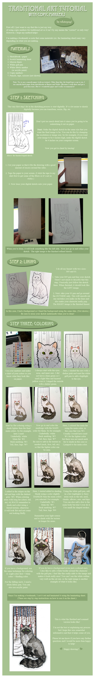 Traditional Art Tutorial - With Markers by lilyote