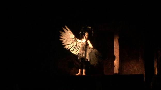 Harpy wings 1
