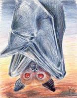 Bat by JamieCOTC