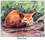 Desert Fox: Repost