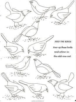 Bird Pairings