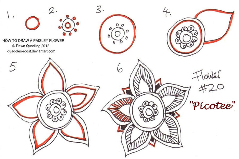 How To Draw Paisley Flower 20 Picotee By Quaddles Roost On DeviantArt
