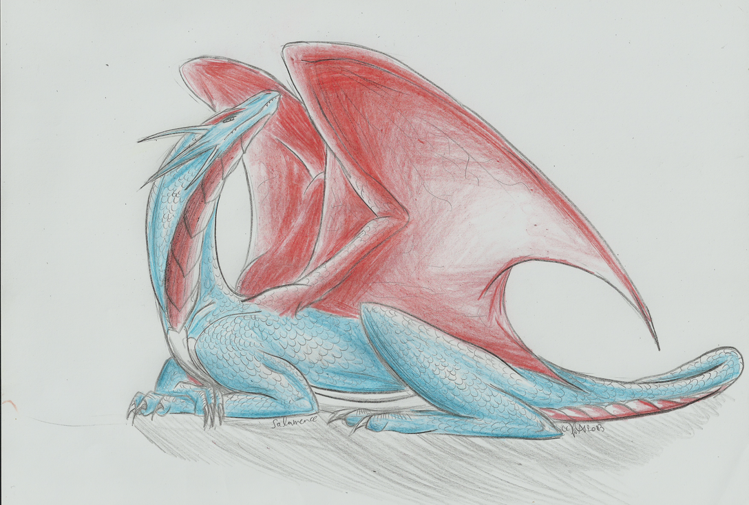 Dragon's pride by AwakiAlkyona