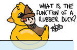 What is the function of a rubber duck by LilHarrySeries