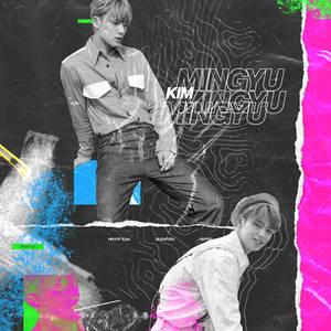 mingyu but it's another euphoria edit