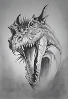Dragon by rudy321