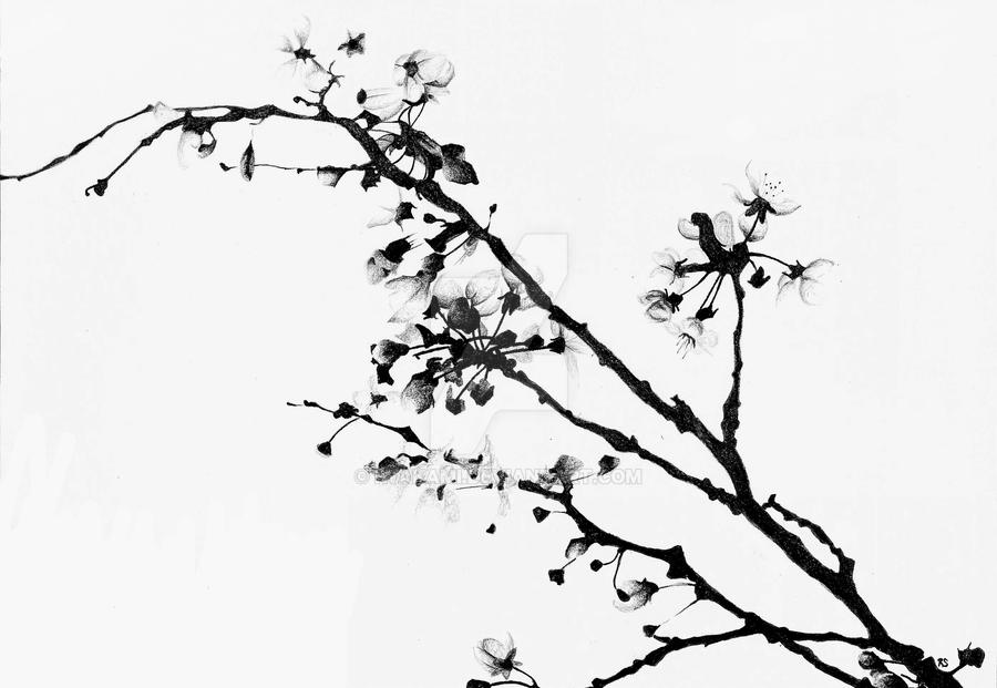 White And Black Cherry Blossoms By Iwakami On Deviantart