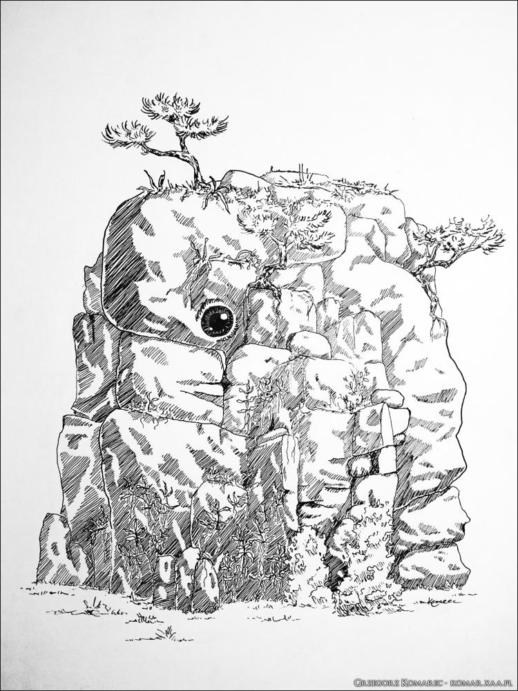 A rock with eye by Komar4