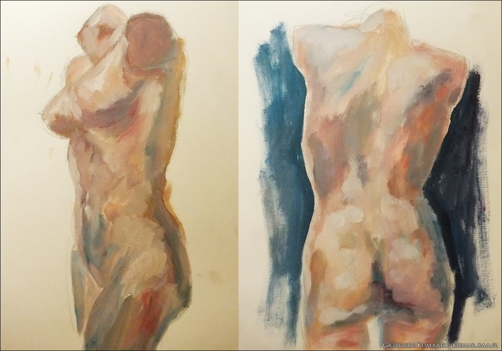 Mannequin torsos by Komar4