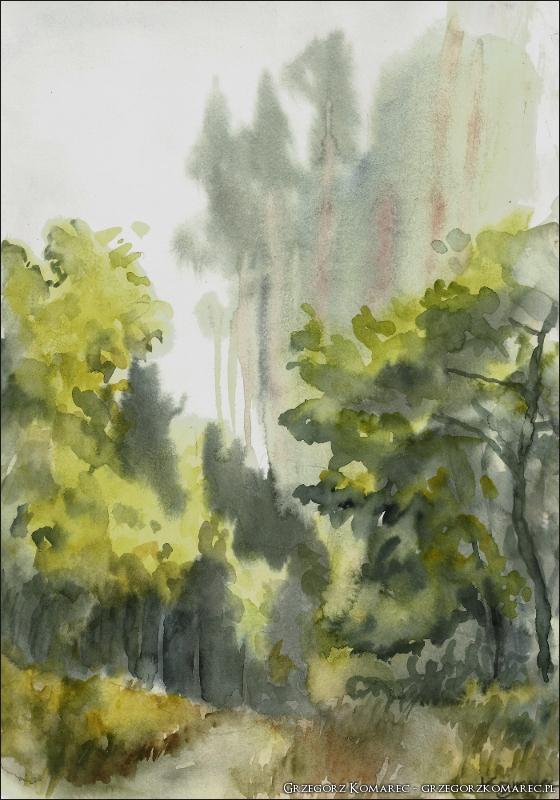Swidwie watercolour by Komar4