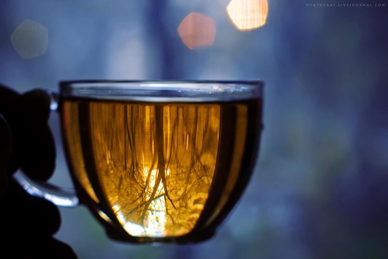 Tea-2 by OlgaVoronova