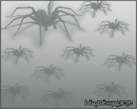 .Spiders