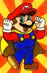 The Hero of Mushroom Kingdom.