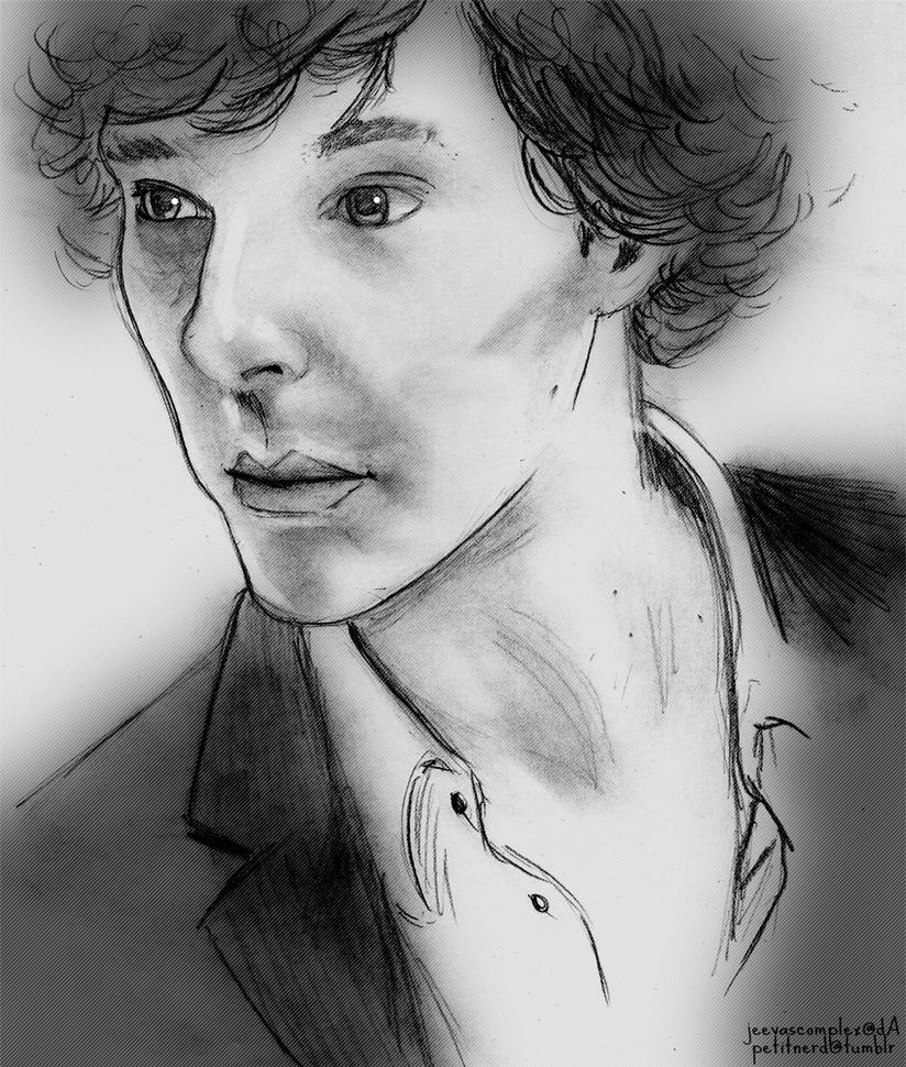 Sherlock. by wintercaptain