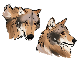 C: Issa Sketches by deadonarrival
