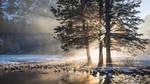Avraham Chaim Kerendian - Winter Photography